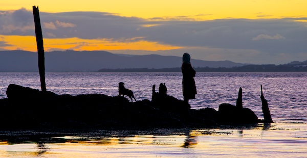 A woman and tow dogs can be seen in otline against a sunset at Balmerino Bay
