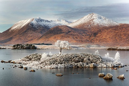 hoar frosted tree on a small island in the loch with a mountain range in the distance with snow covered peaks.