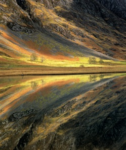 Refection of an autumn coloured scene of amber and golds on a loch in front of a hillside